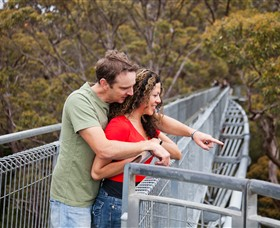 Valley of the Giants Tree Top Walk - Sunshine Coast Tourism