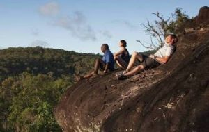 Cooktown Aboriginal Art Tours - Sunshine Coast Tourism