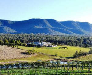 Grapevines Boutique Accommodation - Sunshine Coast Tourism